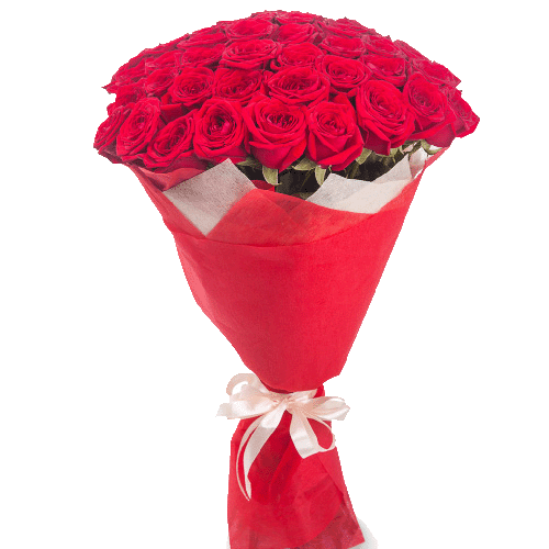 51_red_roses.png
